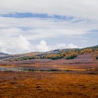 По дороге на перевал Кату-Ярык :: Elena Nikitina