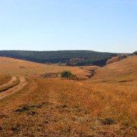 Осень в предгорьях Северного Кавказа. :: Vladimir 070549
