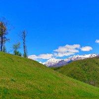 тут лето, а там зима в сочинских горах :: Антонина Владимировна