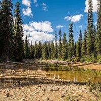 пересыхающее озеро :: Константин Шабалин