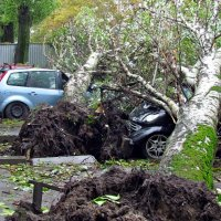 после урагана :: Александр Корчемный
