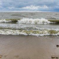Морской бриз.. :: Yuriy Puzhalin