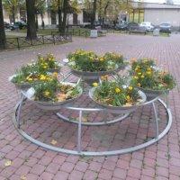 Осень в питерском дворике :: BoxerMak Mak