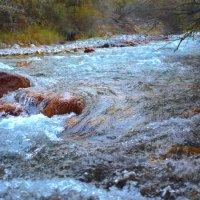 Очень чистая и вкусная вода :: Zergotron