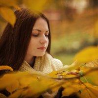 Осень :: Сергей Джулай