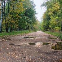 Дождливый, осенний день :: Павлова Татьяна Павлова