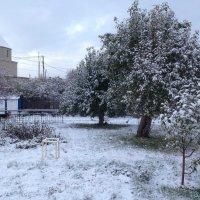 Первый снег :: Vladikom