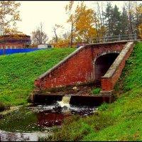 В Баболовском парке  /14/ :: Сергей