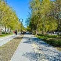 парк :: Света Кондрашова