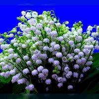 Весна :: Владимир Хатмулин