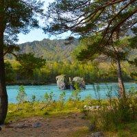 Приятное место для отдыха. :: Валерий Медведев