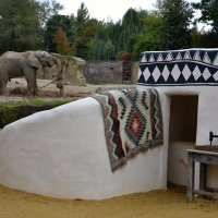 Ателье для слонов :: tamara *****