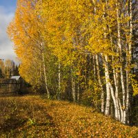 Осень в деревне :: Валентин Котляров