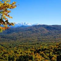 Лаганаки - осень :: Геннадий