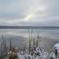 и отдалённые седой зимы угрозы... :: сергей