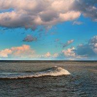 Рождение волны :: Marina Pavlova