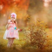 розовая осень :: Света Солнцева