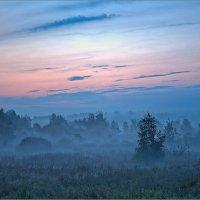 Между ночью и рассветом :: Юрий Спасенников