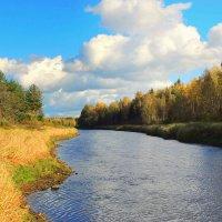 Осень золотая в зеркале реки :: Павлова Татьяна Павлова