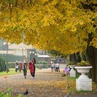 В городском парке... :: Олег Козлов