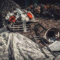 Деревенская романтика :: Татьяна Сапун