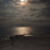 ночь на пляже :: Varvara Aravrav
