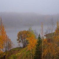 Осенний утренний туман :: Анатолий