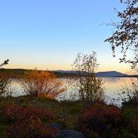 Вечер у озера :: Ольга