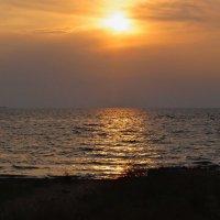 Закаты Азовского моря. :: владимир
