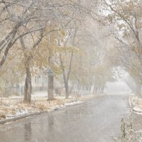 Первый снег :: Майя Смехова