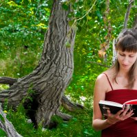 Одиночество и чтение :: Александр Сошников