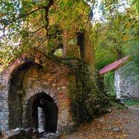 Церковь. :: Tatiana Voitchak