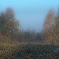Осень. Утро. Туман. :: михаил суворов
