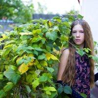 У себя во дворе. :: Elena Vershinina