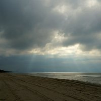 Sunny Bunny at the Baltic sea. :: Tatiana Golubinskaia