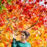 Огненная осень :: Mila Popova
