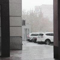 Первый снег :: Elena Kashmareva