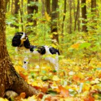 Осенняя сказка... :: *MIRA* **