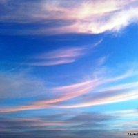 небесное волнение :: Anna Sokolovsky