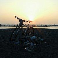 Sunset :: Дарья Зеевальд