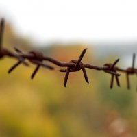Запретная осень :: Алекс Громов