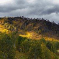 Красота алтайских сопок :: Алексей Писарев