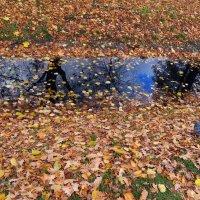 Отражение осени :: татьяна петракова