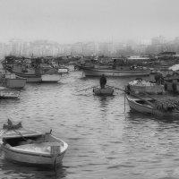 Лодки :: Igor Antipov