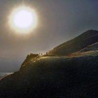 навстречу солнцу! :: viton