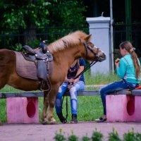 Девушка и лошадка. :: Виктор Иванович