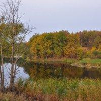 Осеннее озеро в пригороде Уфы :: Сергей Тагиров