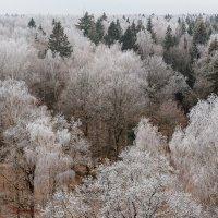 Зимняя сказка... :: Viktor Nogovitsin