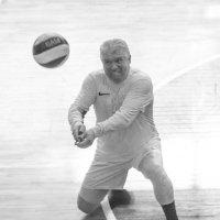 Соревнования по волейболу 5 :: Людмила Мозер