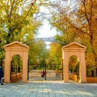 Вход в парк :: Вячеслав Баширов